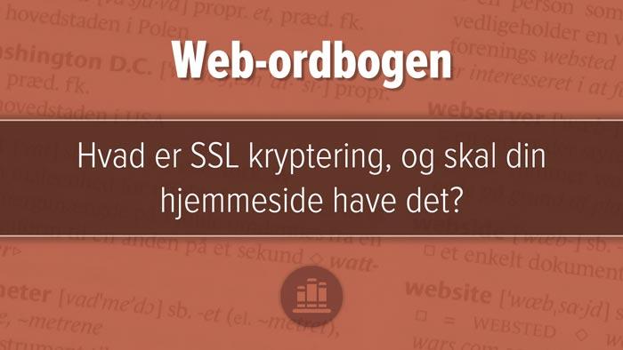 """Udvalgt billede til artiklen, """"Hvad er SSL kryptering, og skal din hjemmeside have det?"""". Rødbrunt design med tre horisontale felter, mørkest i midten."""